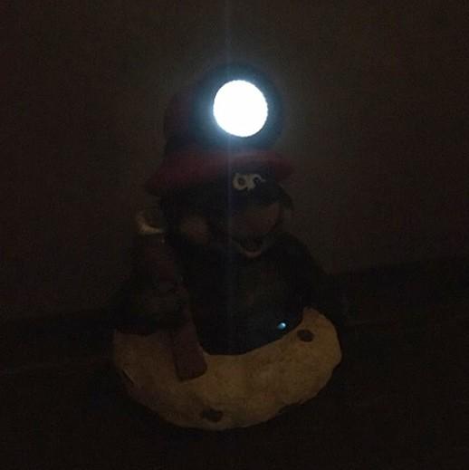 Maulwurf mit Solar-Stirnlampe bei bekos.ch